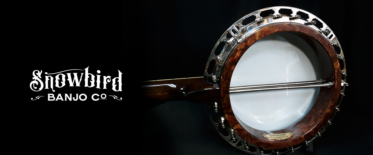 Resonator Banjo #1