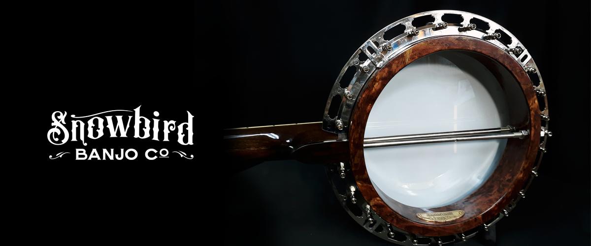 Resonator Banjo #1